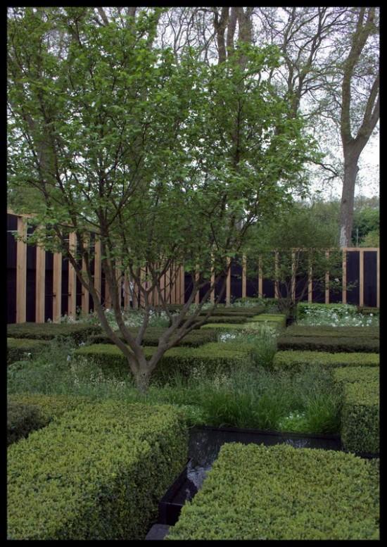 telegraph garden chelsea